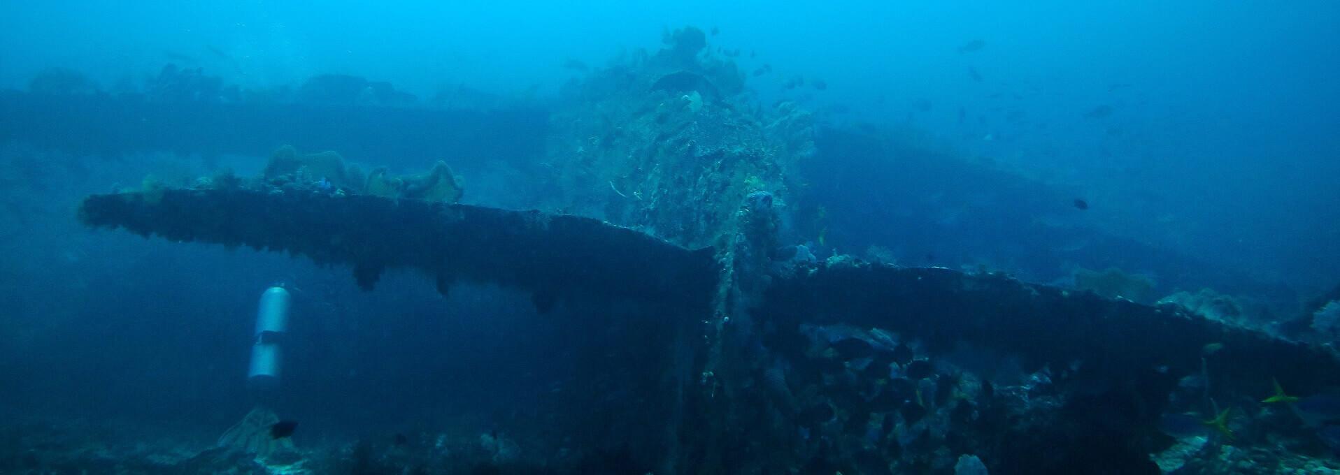 Dive An Underwater Plane Wreck