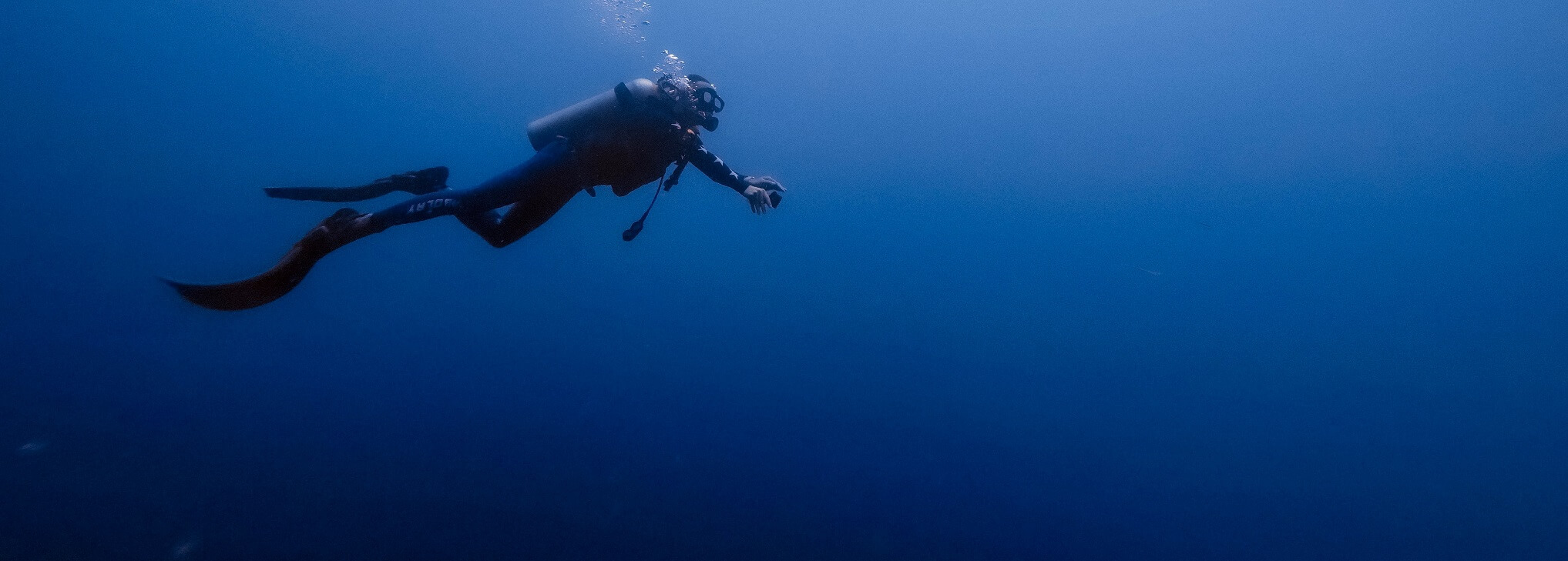 We believe in Diving to make a Difference and that's why we Dive Differently