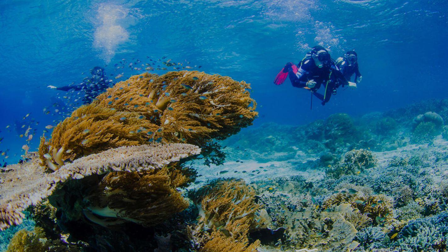 Meridian Adventures Dive Resort Book PADI Open Water Diver Course