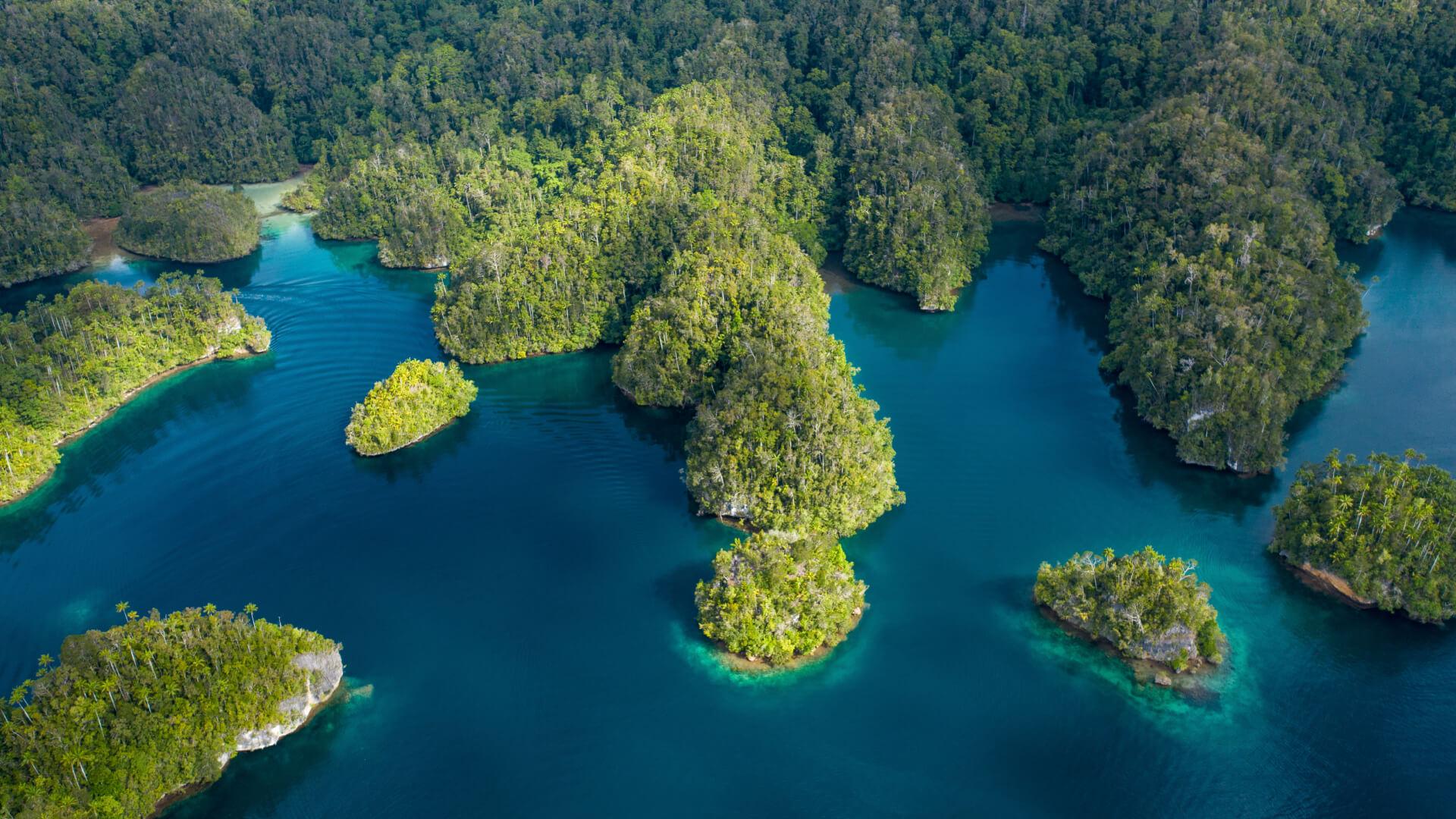 Raja Ampat Eco Resort